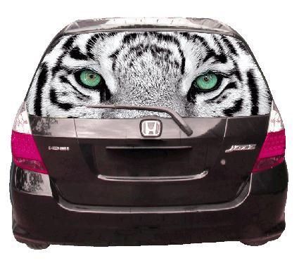 печать на перфорированной пленке, пленка на стекла автомобиля