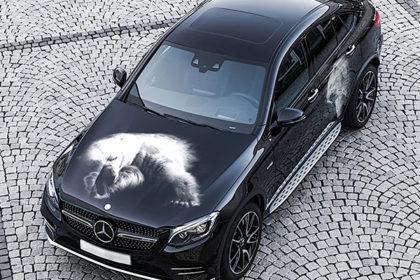 Печать на прозрачной автомобильной пленке